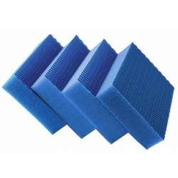 COLOR Clean HACCP Bleue